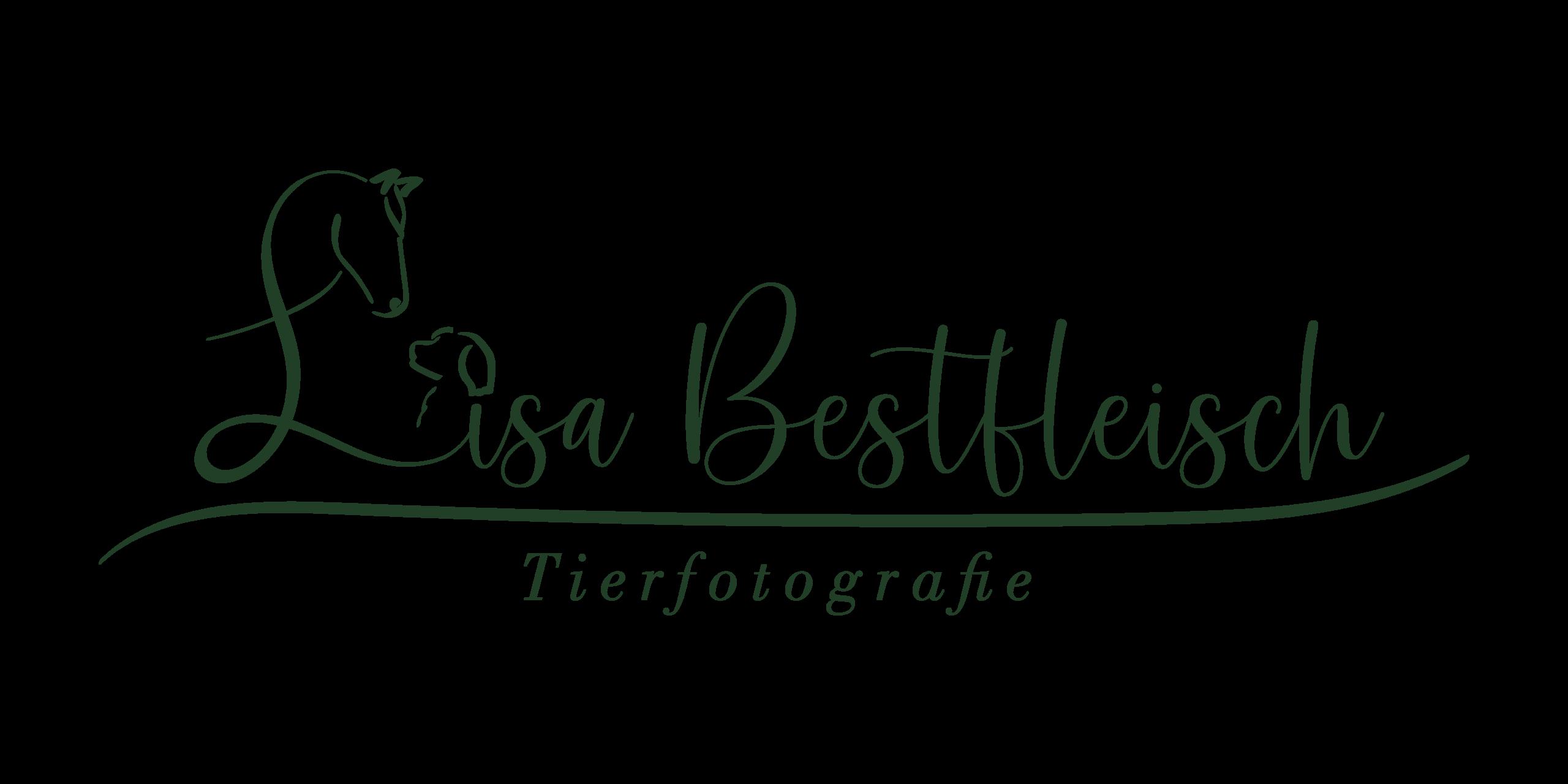 Lisa Bestfleisch - Tierfotografie