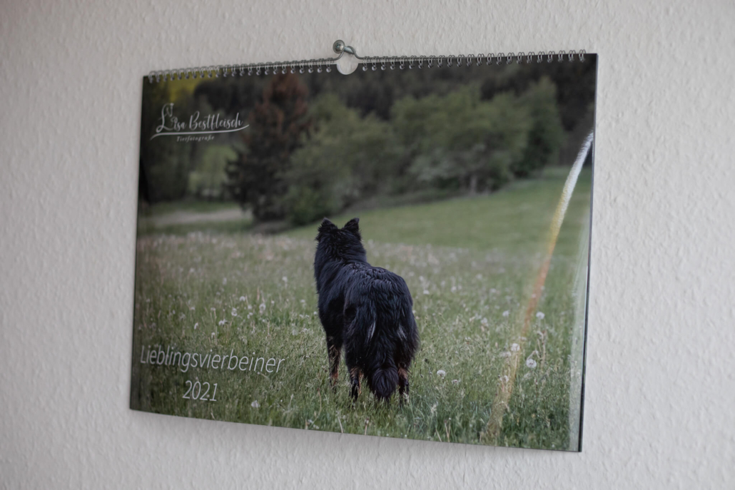 Deckblatt des Lieblingsvierbeiner Kalends